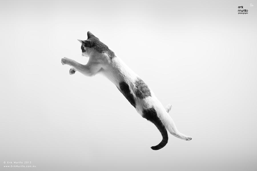 El salto de Marie.