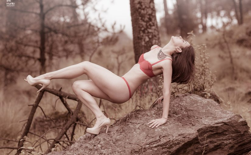 Shooting en el bosque.